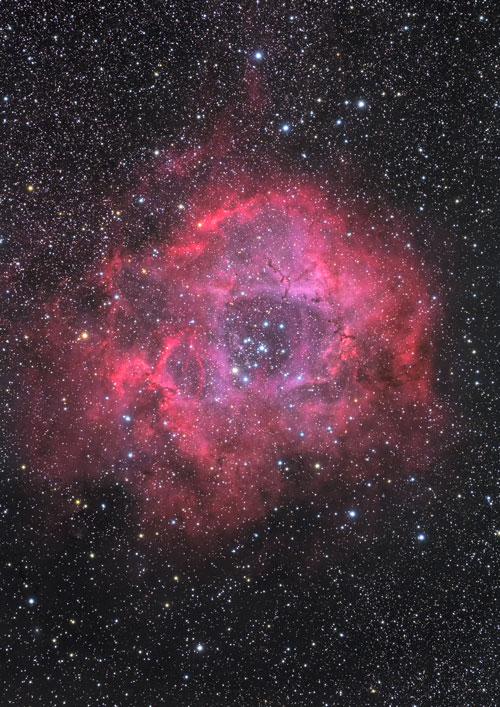 ばら星雲 | 写真素材 | 天体写真...