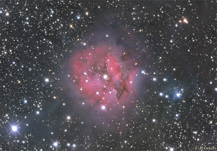 The Cocoon Nebula
